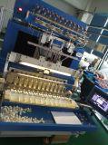 Generatore dell'anione (SY-C1)