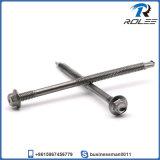 頑丈な鉄骨構造のための410ステンレス鋼のTekねじ