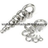 중국 스테인리스에서 드는 눈 견과 공장은 304 DIN 582를 조인다
