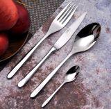Jeu de vaisselle de course de cuillère de fourche de couteau
