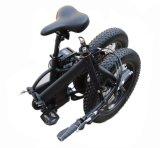 Nuevo Ebike plegable con el neumático gordo 20 pulgadas para la venta