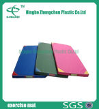 Couvre-tapis se pliant de forme physique, couvre-tapis en caoutchouc de gymnastique d'anti glissade non-toxique de couvre-tapis de gymnastique