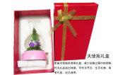El regalo de boda preservó rosas naturales