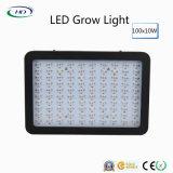 Lo spettro completo 120PCS*10W LED si sviluppa chiaro per le verdure & le frutta