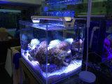14/18/24/28 / 39W Iluminación de acuario de LED azul + blanco para tanque de pescado