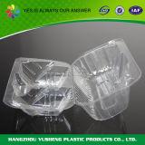 Wegwerfkuchen, der freien Plastikbehälter verpackt
