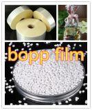 Plastica bianca BOPP Masterbatch di Masterbatch per la pellicola e l'iniezione