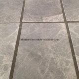El mármol gris embaldosa la obscuridad de plata de Skyros para la pared y el suelo