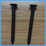 De zwarte Spijker van de Steel van de Ring met Scherp Punt