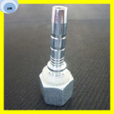 Raccords en laiton Bsp 60 Bsp Hydraulic Fitting Female Fitting
