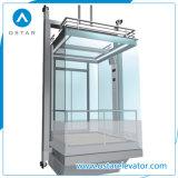 経済的な観光の上昇、Vvvf制御を用いるパノラマ式のエレベーター