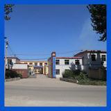Manuelle Funktions-medizinisches Bett-Krankenhaus-Bett der Funktions-ABS/Steel fünf