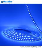 5meter 96LEDs/M SMD5050 RVB Waterproof DEL Strip