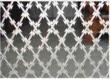 Сеть загородки сетки Concertina бритвы высокого качества колючий