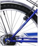 Leichtes Alloy Folding Bicycle mit Shimano Derailleur und Shifter