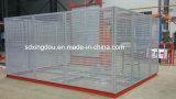 Constructeur d'élévateur de passager de construction de construction pour les matériaux et le personnel de levage