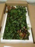 Piante di alta qualità e fiori artificiali della parete verde Gu-Wall05182815