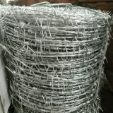 ステンレス鋼の二重線の有刺鉄線