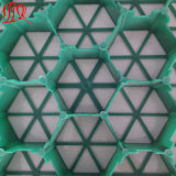 고품질 판매를 위한 플라스틱 잔디 포장 기계 격자