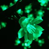 Street Decoration를 위한 LED Cherry Blossom Tree Light