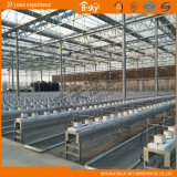 Multi-Span Greenhouse de vidro Use como o jardim de Picking