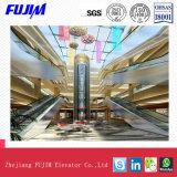Полностью стеклянный лифт Sighting для торгового центра с высоким Satety