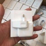 iPad 4/5/空気のためのオリジナルUSBの充電器のアダプター