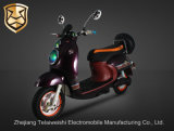 800W Intelligent Central Locking System Brushless Motor E-Bike