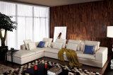 O sofá Home moderno popular da tela da sala de visitas da mobília ajustou-se (HC8128)