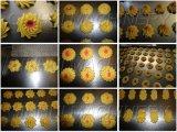 Многофункциональная машина печений (QH400-1000)