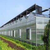 Serre chaude en verre de Multi-Envergure de fournisseur de la Chine