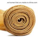 Trama brasileira do cabelo humano de Remy do Virgin reto não processado