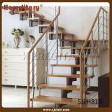 Escadas de madeira de vidro de chapas de aço duplo duplo (SJ-3026)