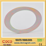 Ímã de anel aglomerado alta qualidade do Neodymium com furo grande para Louderspeaker