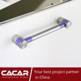 Gabinete de cozinha de laca de envernizamento de estufa de moda elegante violeta (CAIK-06)