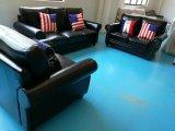 Sofá de América, sofá da combinação, sofá 1+2+3 de couro (8001)