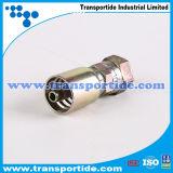 Transportideはホースフィッティング/管付属品を鍛造した
