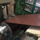 Folha de aço galvanizado pré-pintado SGCC em bobinas PPGI