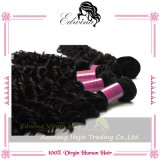 7A Edwina Hair Products 브라질 Deep Wave Virgin Hair