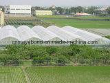 la verdura verde 50mesh pianta l'anti rete della prova dell'insetto della rete dell'afide dell'anti rete dell'insetto per la serra