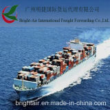 Service de fret maritime des meilleurs taux de société de transport de fret maritime de Chine (Guangzhou) vers Moyen-Orient