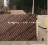6mm Marine Plywood Sheet、Film Faced Plywood