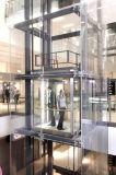 中国の製造者による乗客のエレベーター