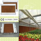 Greenhouse /Poultry House를 위한 주문을 받아서 만들어진 Energy Saving Cooling Pad