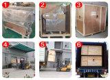 Machine à emballer horizontale automatique d'accessoires de véhicule de flux dans la machine de remplissage