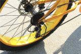 販売のための2016年のCheape脂肪質の電気浜の巡洋艦の自転車