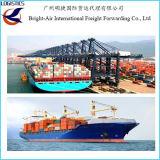 O transporte internacional barato do frete avalia o frete de mar de China a Agadir Marrocos