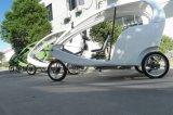 800W Brushless Motor Highquality Manufature chinês E-Rickshaw (DCQ500DQZK)