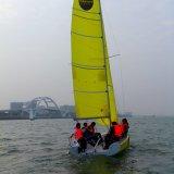 La fibre de verre normale du laser un de laser folâtre le bateau à voiles