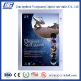 QUENTE: Diodo emissor de luz ao ar livre impermeável de fabricação Box-YGW42 claro